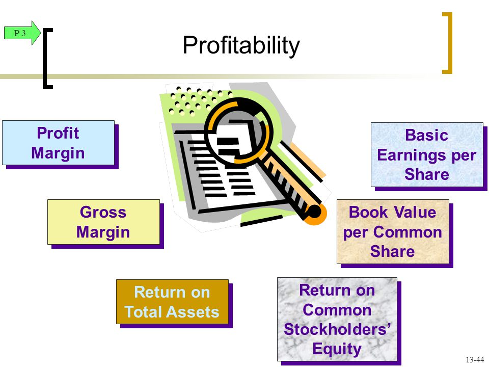 Profit Margin Profit Margin Gross Margin Return on Total Assets Basic Earnings per Share Book Value per Common Share Return on Common Stockholders' Equity Profitability P 3 13-44