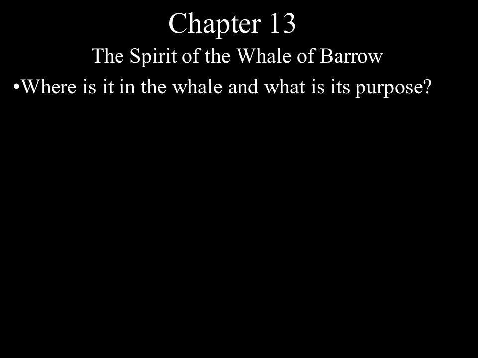 Chapter 13 The Spirit of the Whale of Barrow Where is it in the whale and what is its purpose