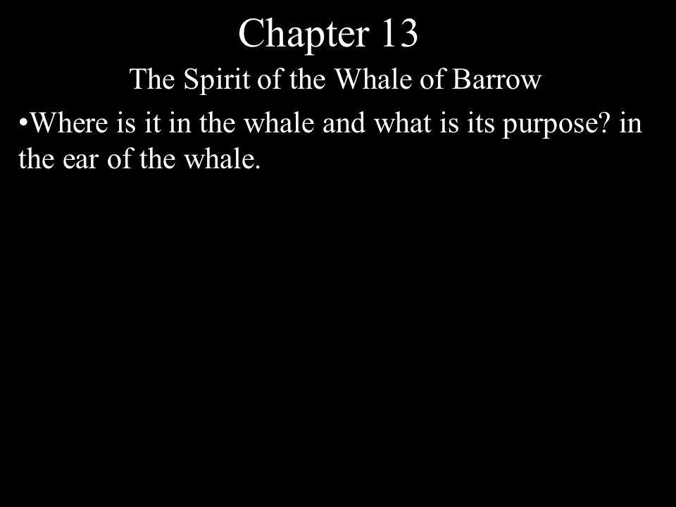 Chapter 13 The Spirit of the Whale of Barrow Where is it in the whale and what is its purpose? in the ear of the whale.