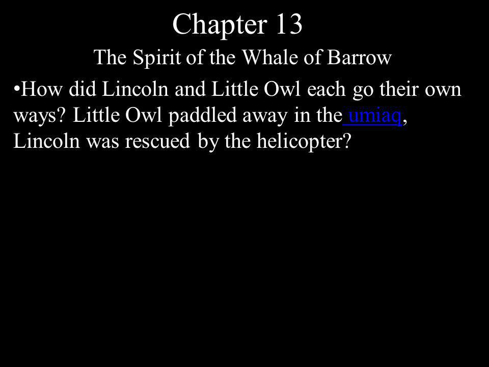 Chapter 13 The Spirit of the Whale of Barrow How did Lincoln and Little Owl each go their own ways? Little Owl paddled away in the umiaq, Lincoln was