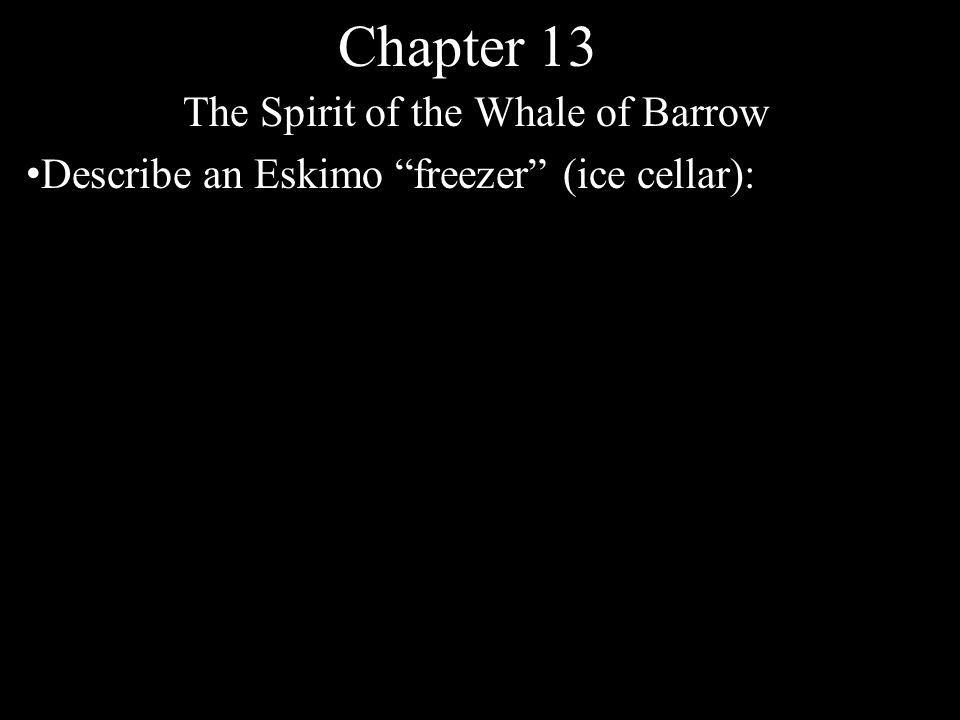 Chapter 13 The Spirit of the Whale of Barrow Describe an Eskimo freezer (ice cellar):