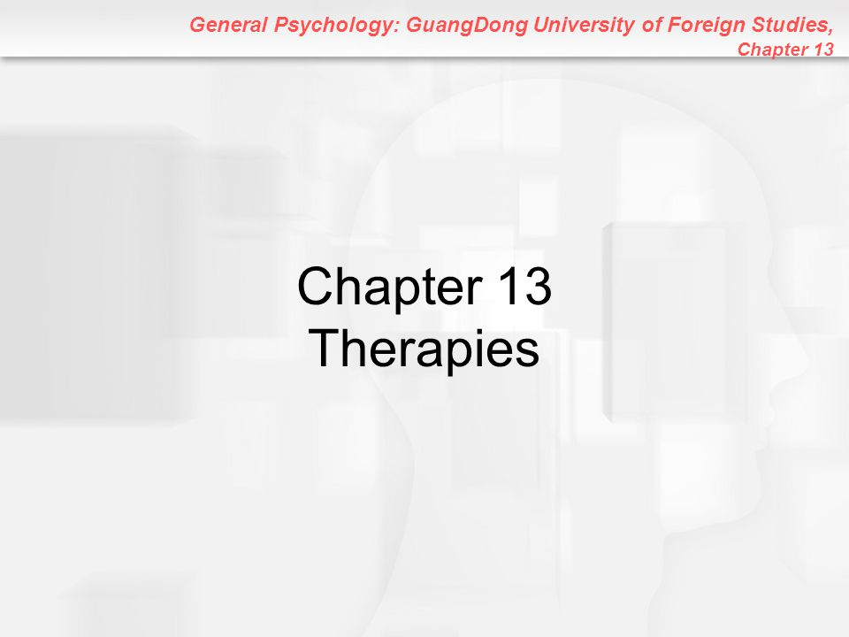 General Psychology: GuangDong University of Foreign Studies, Chapter 13 Chapter 13 Therapies