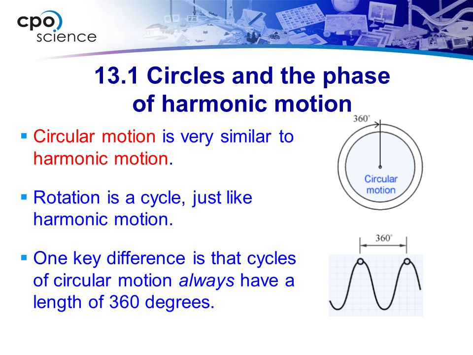 13.1 Circles and the phase of harmonic motion  Circular motion is very similar to harmonic motion.  Rotation is a cycle, just like harmonic motion.