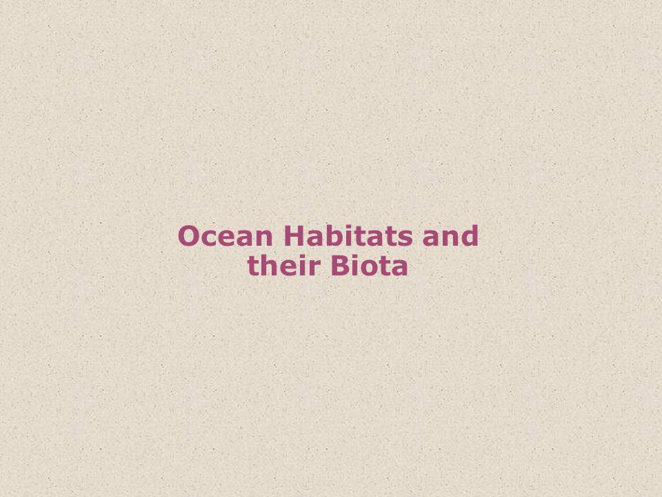 Ocean Habitats and their Biota