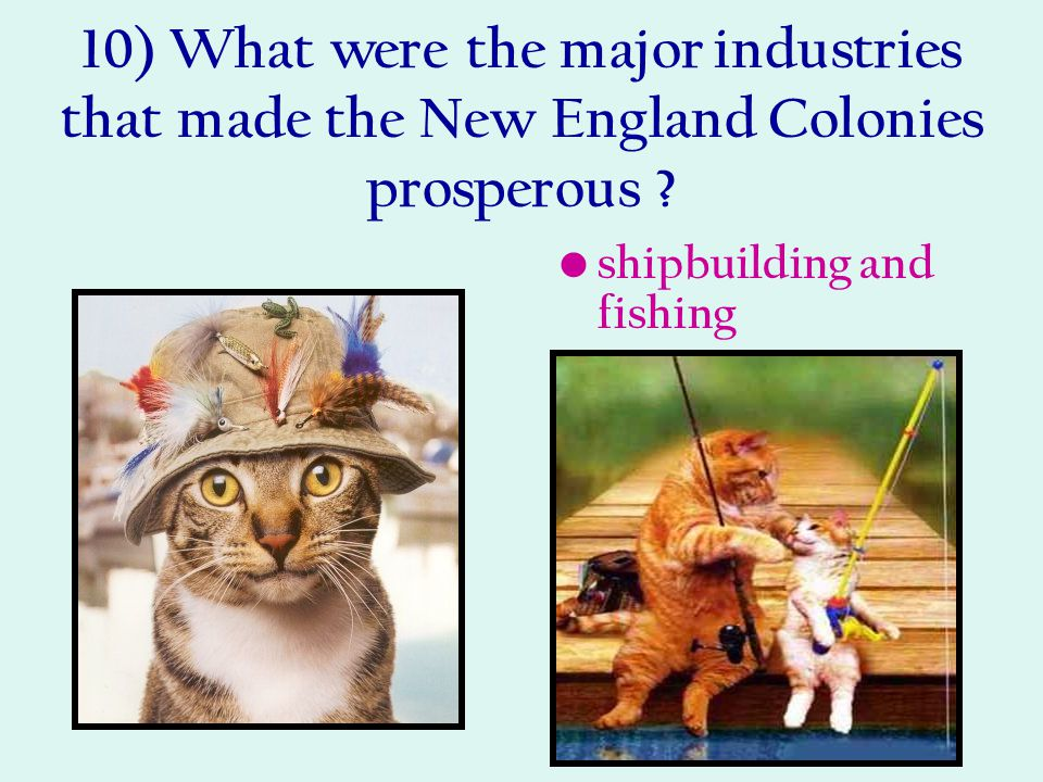 10) What were the major industries that made the New England Colonies prosperous ? shipbuilding and fishing