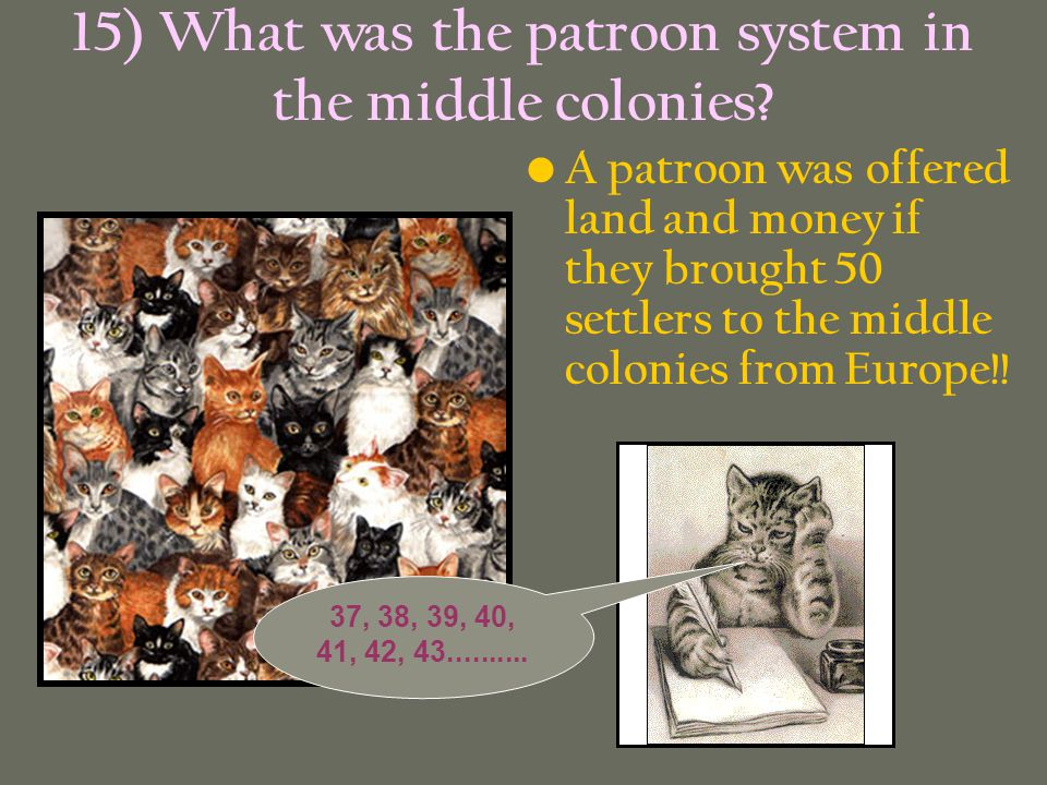15) What was the patroon system in the middle colonies? A patroon was offered land and money if they brought 50 settlers to the middle colonies from E