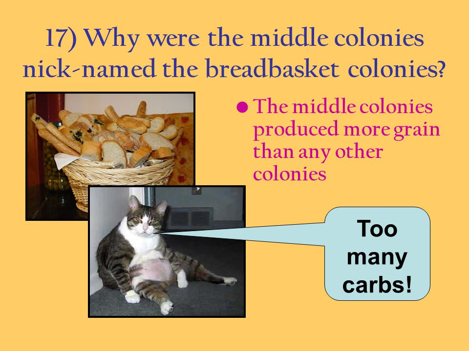 17) Why were the middle colonies nick-named the breadbasket colonies? The middle colonies produced more grain than any other colonies Too many carbs!