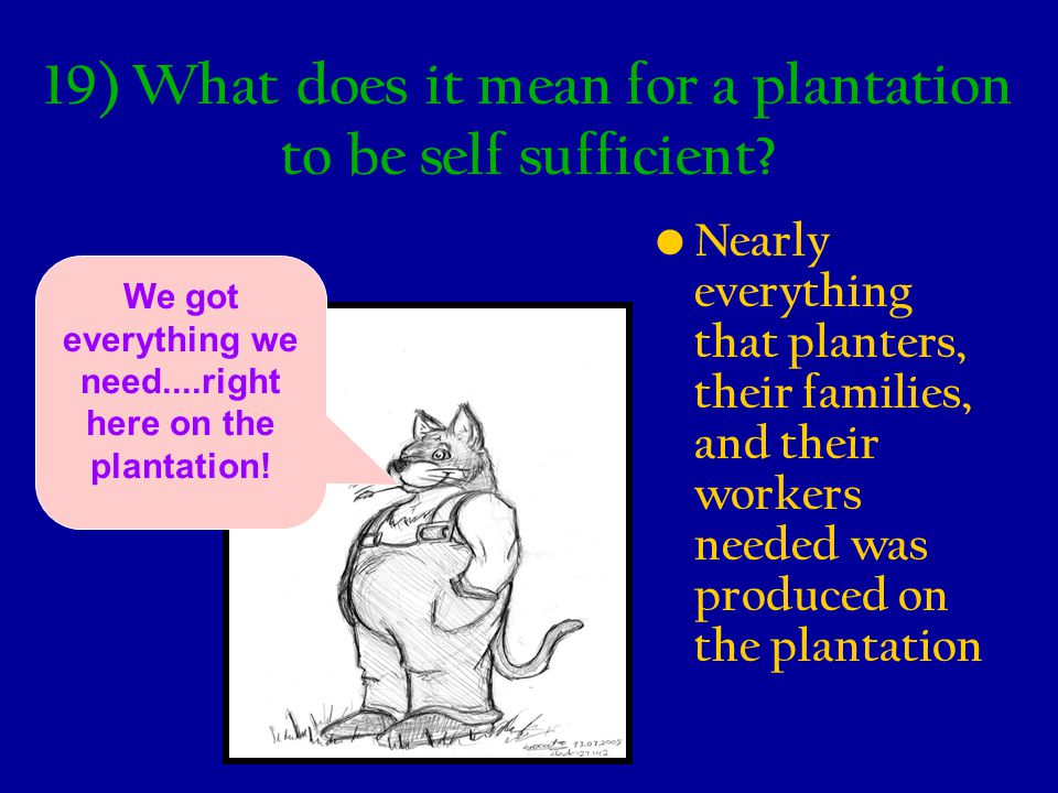 19) What does it mean for a plantation to be self sufficient? Nearly everything that planters, their families, and their workers needed was produced o