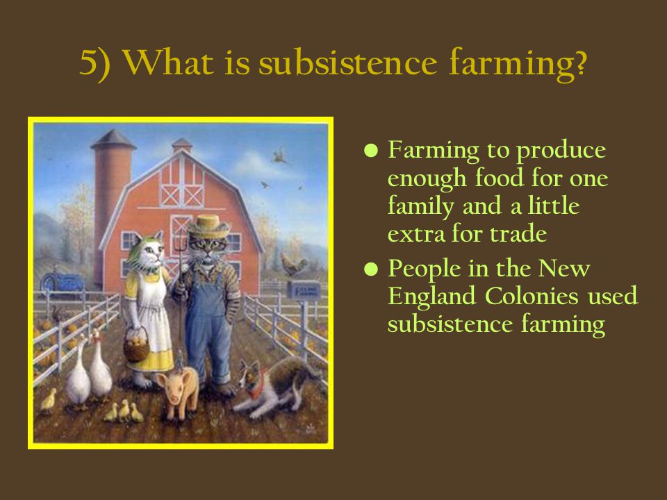 5) What is subsistence farming? Farming to produce enough food for one family and a little extra for trade People in the New England Colonies used sub