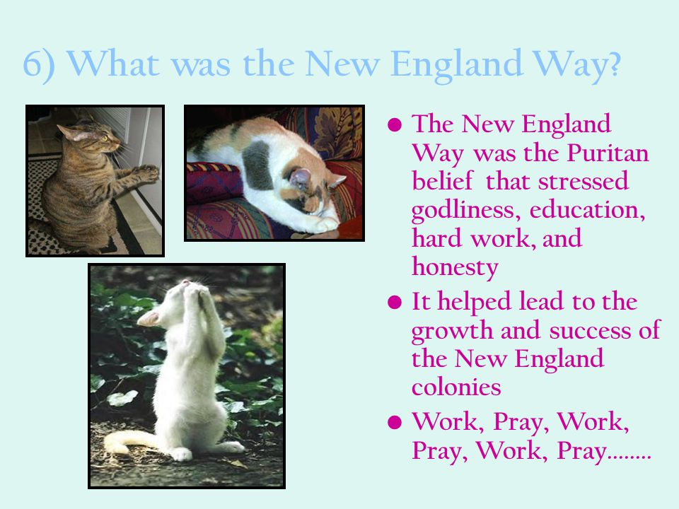6) What was the New England Way? The New England Way was the Puritan belief that stressed godliness, education, hard work, and honesty It helped lead