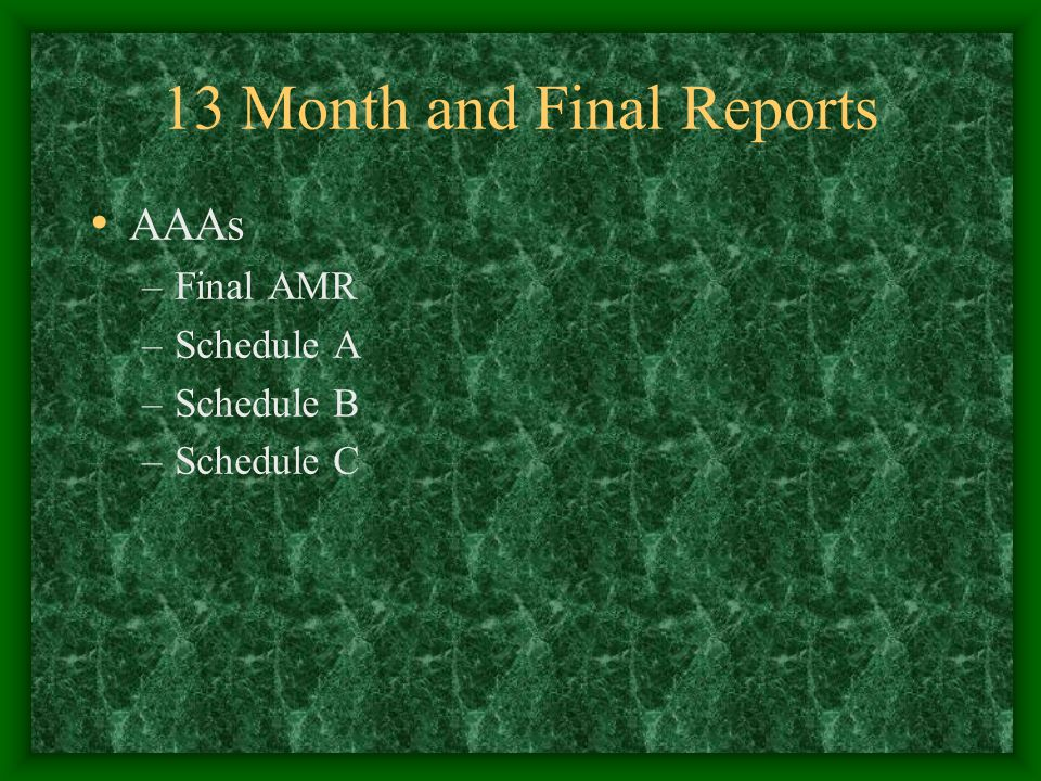 13 Month and Final Reports AAAs –Final AMR –Schedule A –Schedule B –Schedule C