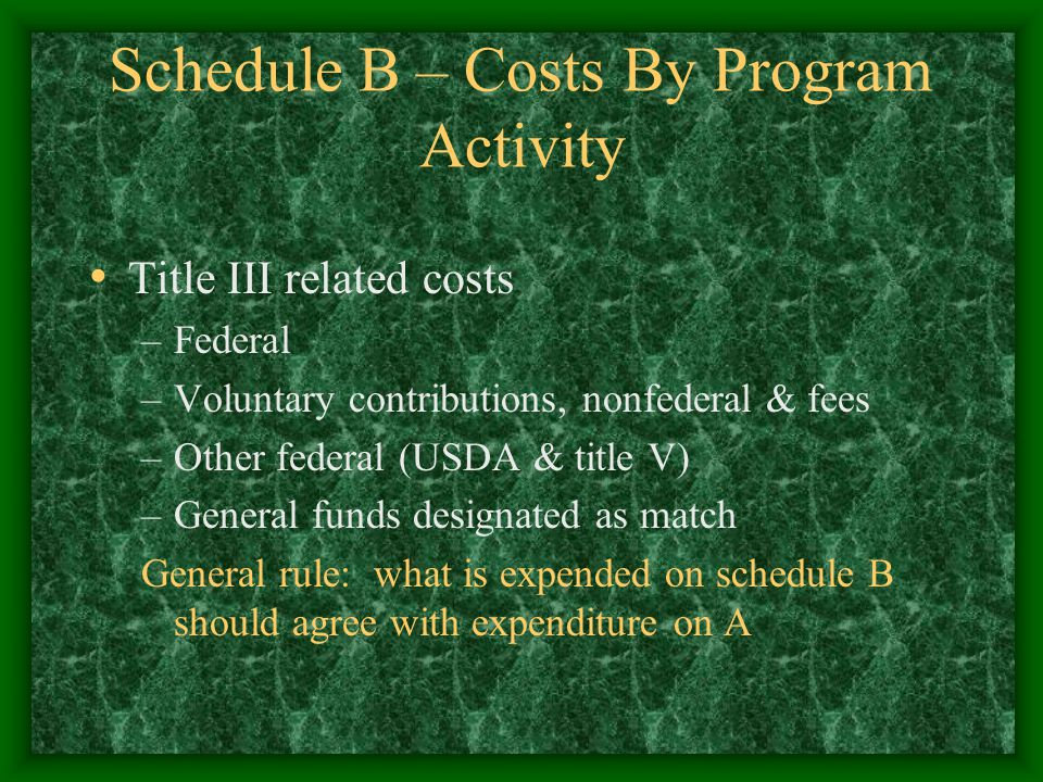 Schedule B – Costs By Program Activity Title III related costs –Federal –Voluntary contributions, nonfederal & fees –Other federal (USDA & title V) –General funds designated as match General rule: what is expended on schedule B should agree with expenditure on A