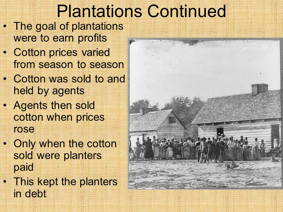 Plantations Continued The goal of plantations were to earn profits Cotton prices varied from season to season Cotton was sold to and held by agents Agents then sold cotton when prices rose Only when the cotton sold were planters paid This kept the planters in debt