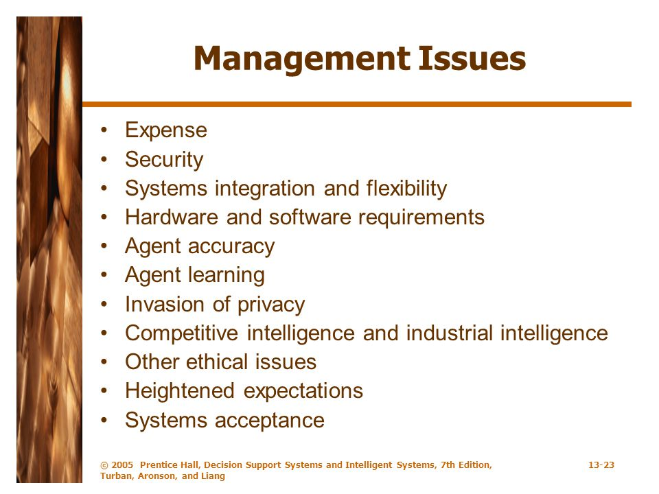 © 2005 Prentice Hall, Decision Support Systems and Intelligent Systems, 7th Edition, Turban, Aronson, and Liang 13-23 Management Issues Expense Securi