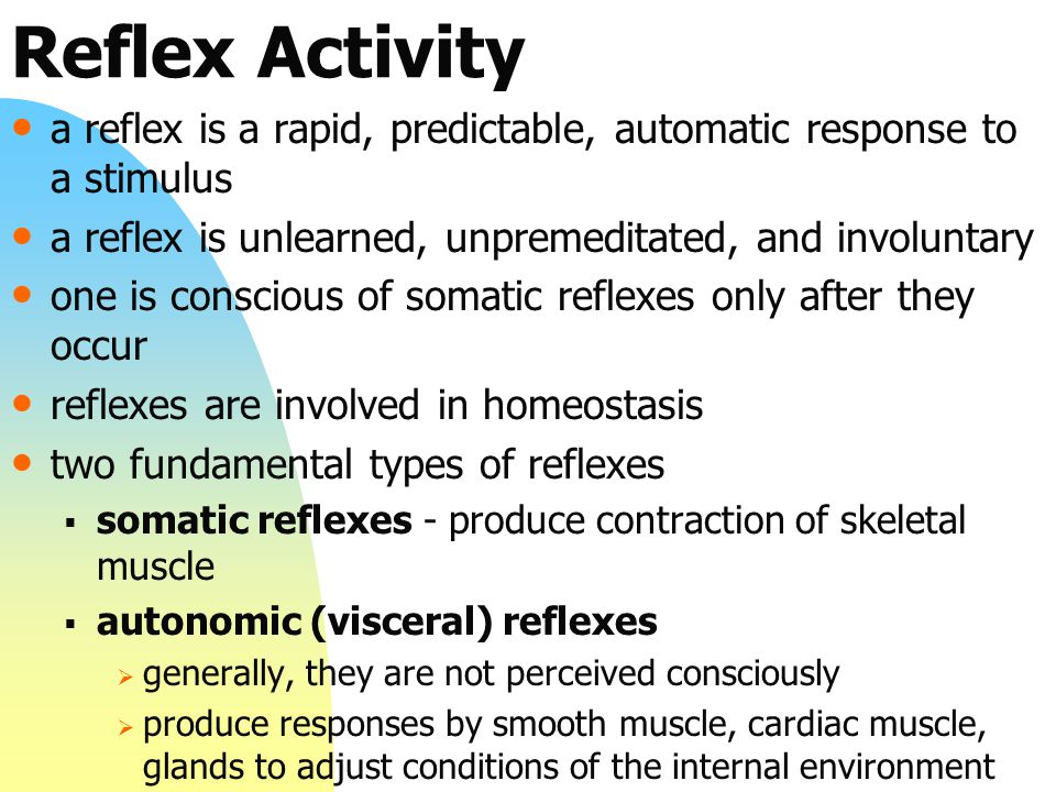 Reflex Activity a reflex is a rapid, predictable, automatic response to a stimulus a reflex is unlearned, unpremeditated, and involuntary one is conscious of somatic reflexes only after they occur reflexes are involved in homeostasis two fundamental types of reflexes  somatic reflexes - produce contraction of skeletal muscle  autonomic (visceral) reflexes  generally, they are not perceived consciously  produce responses by smooth muscle, cardiac muscle, glands to adjust conditions of the internal environment
