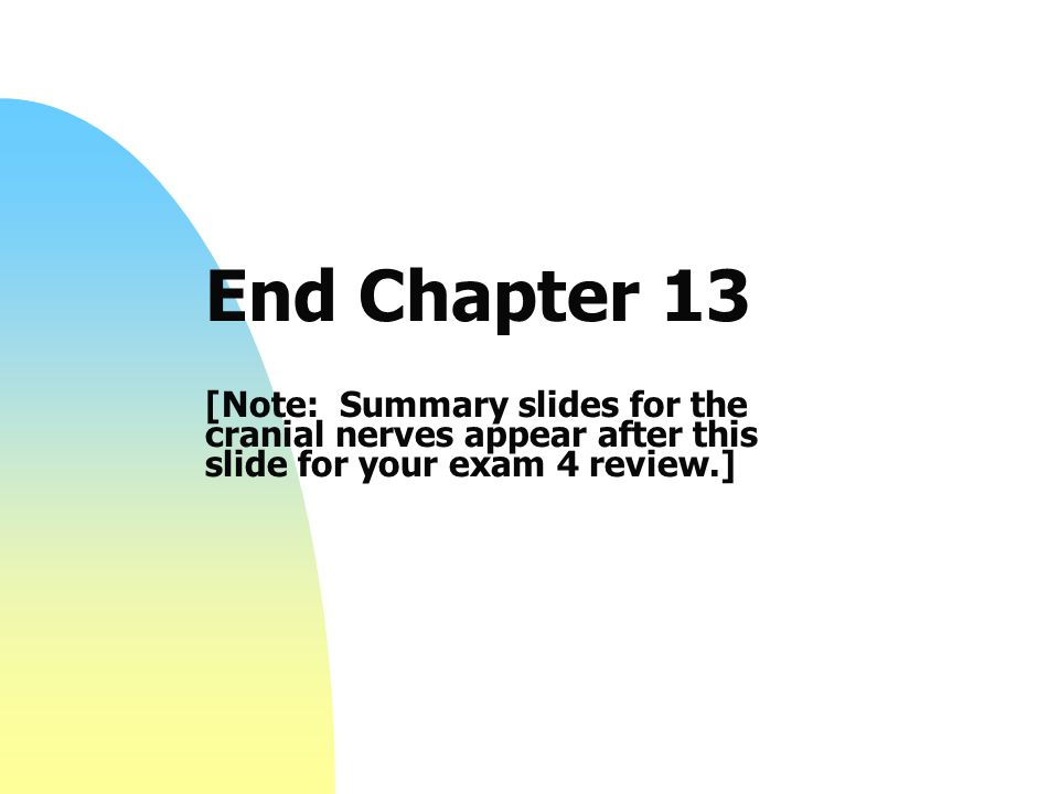 End Chapter 13 [Note: Summary slides for the cranial nerves appear after this slide for your exam 4 review.]