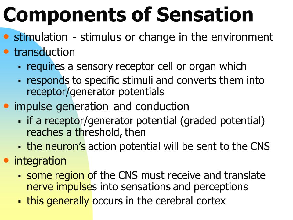 Components of Sensation stimulation - stimulus or change in the environment transduction  requires a sensory receptor cell or organ which  responds