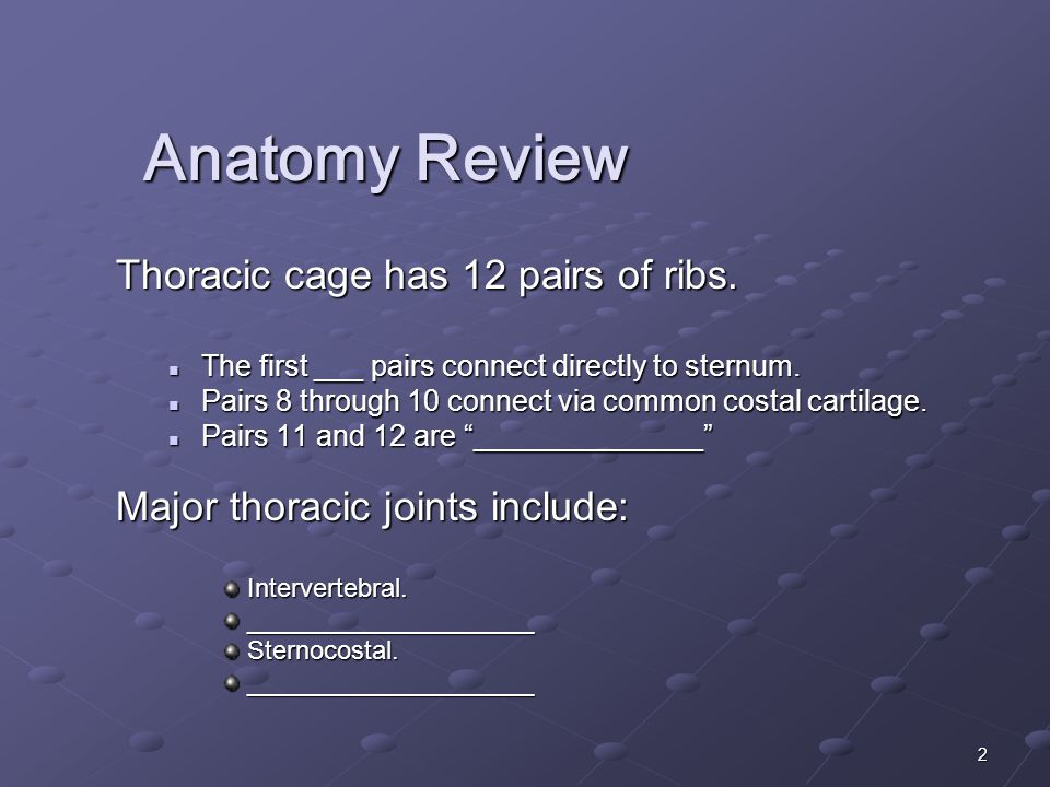 2 Anatomy Review Thoracic cage has 12 pairs of ribs.