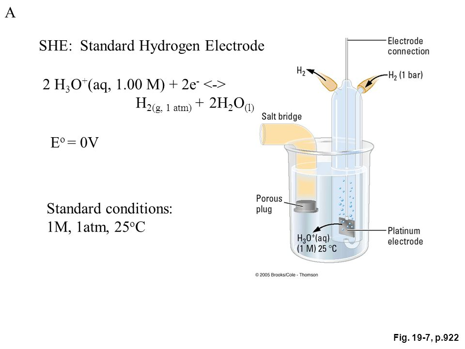 Fig. 19-7, p.922 SHE: Standard Hydrogen Electrode 2 H 3 O + (aq, 1.00 M) + 2e - H 2(g, 1 atm) + 2H 2 O (l) E o = 0V Standard conditions: 1M, 1atm, 25