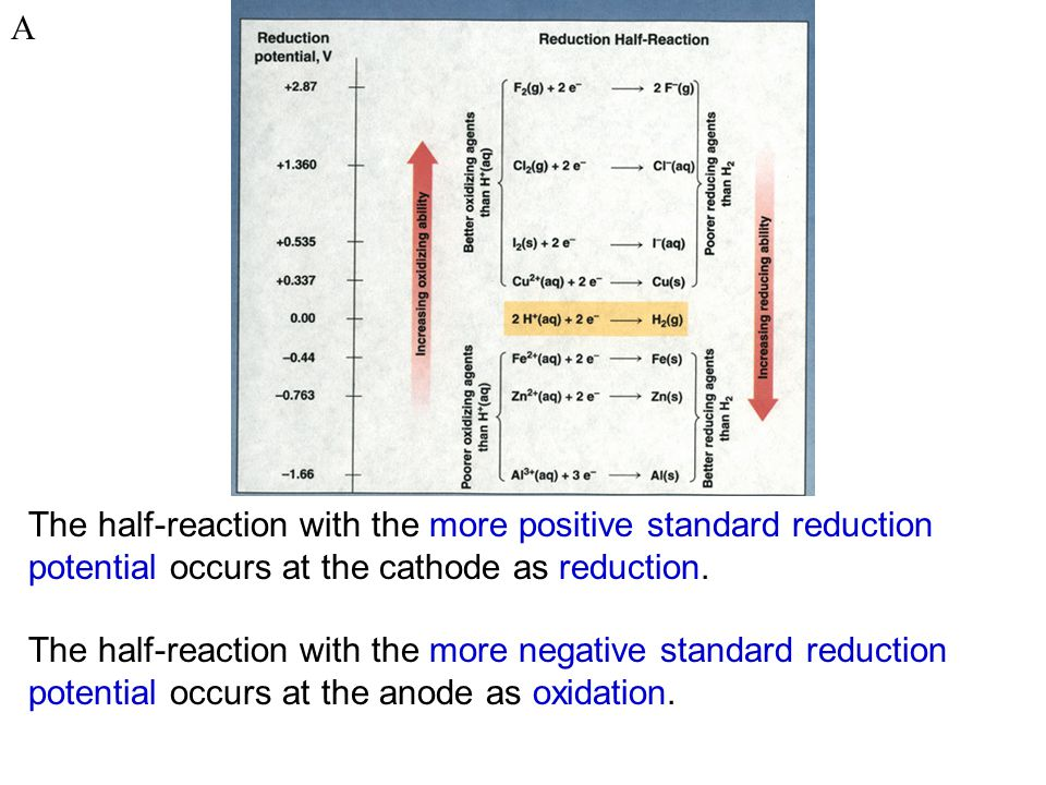 The half-reaction with the more positive standard reduction potential occurs at the cathode as reduction.