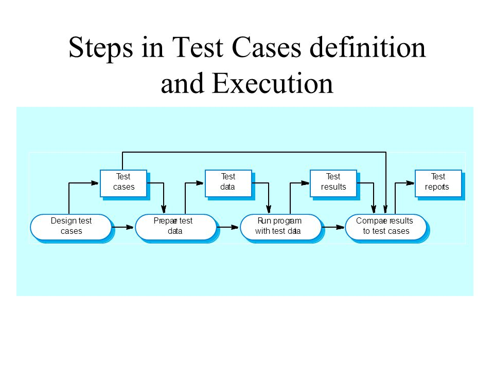 Steps in Test Cases definition and Execution