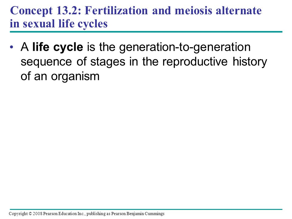 Concept 13.2: Fertilization and meiosis alternate in sexual life cycles A life cycle is the generation-to-generation sequence of stages in the reproductive history of an organism Copyright © 2008 Pearson Education Inc., publishing as Pearson Benjamin Cummings