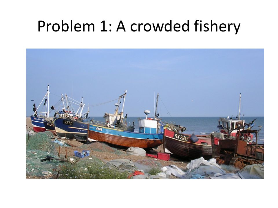 Problem 1: A crowded fishery