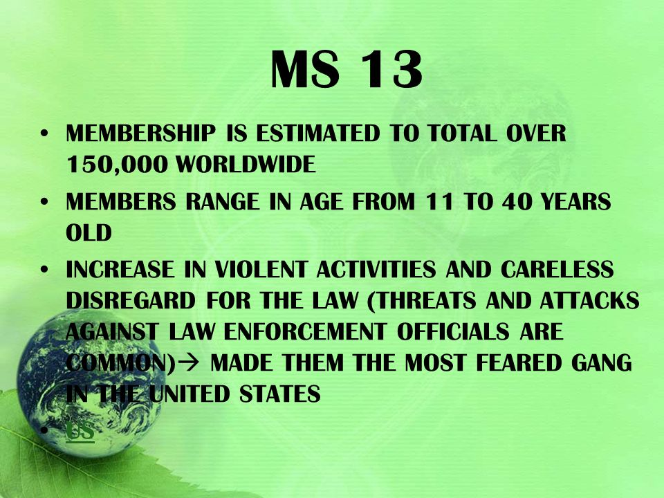 MS 13 MEMBERSHIP IS ESTIMATED TO TOTAL OVER 150,000 WORLDWIDE MEMBERS RANGE IN AGE FROM 11 TO 40 YEARS OLD INCREASE IN VIOLENT ACTIVITIES AND CARELESS