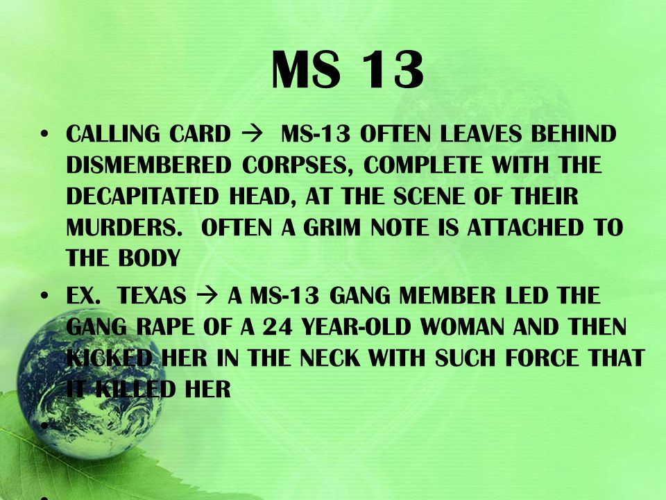 MS 13 CALLING CARD  MS-13 OFTEN LEAVES BEHIND DISMEMBERED CORPSES, COMPLETE WITH THE DECAPITATED HEAD, AT THE SCENE OF THEIR MURDERS. OFTEN A GRIM NO