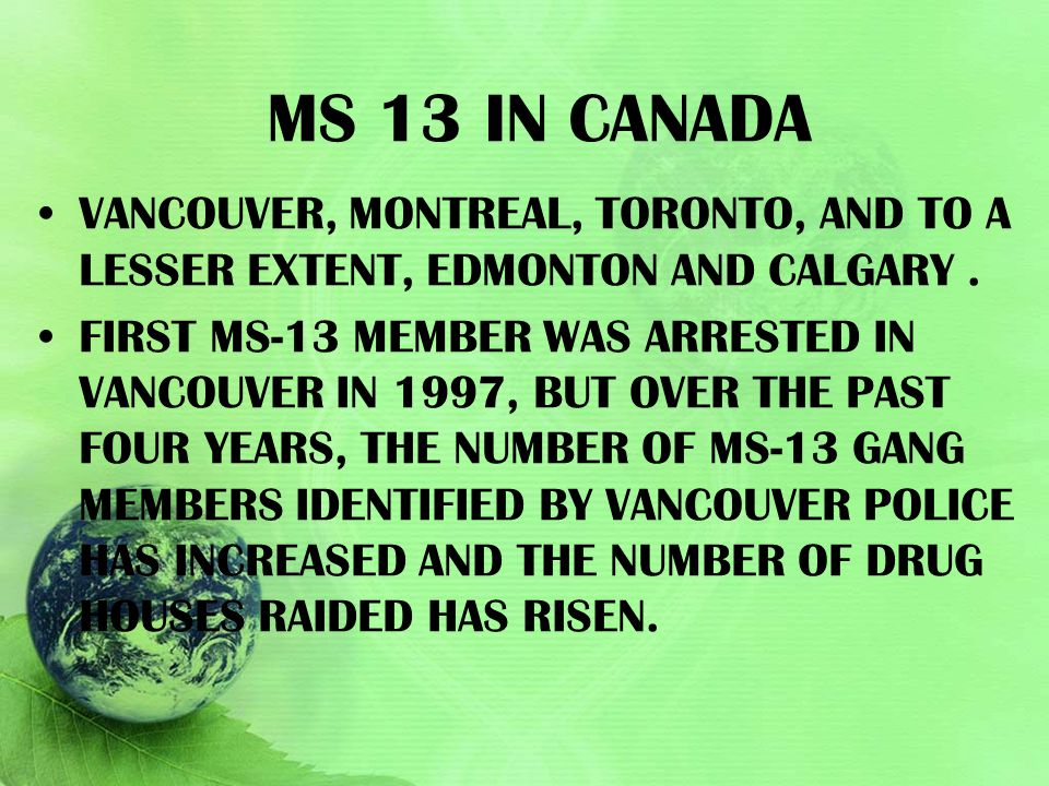MS 13 IN CANADA VANCOUVER, MONTREAL, TORONTO, AND TO A LESSER EXTENT, EDMONTON AND CALGARY. FIRST MS-13 MEMBER WAS ARRESTED IN VANCOUVER IN 1997, BUT