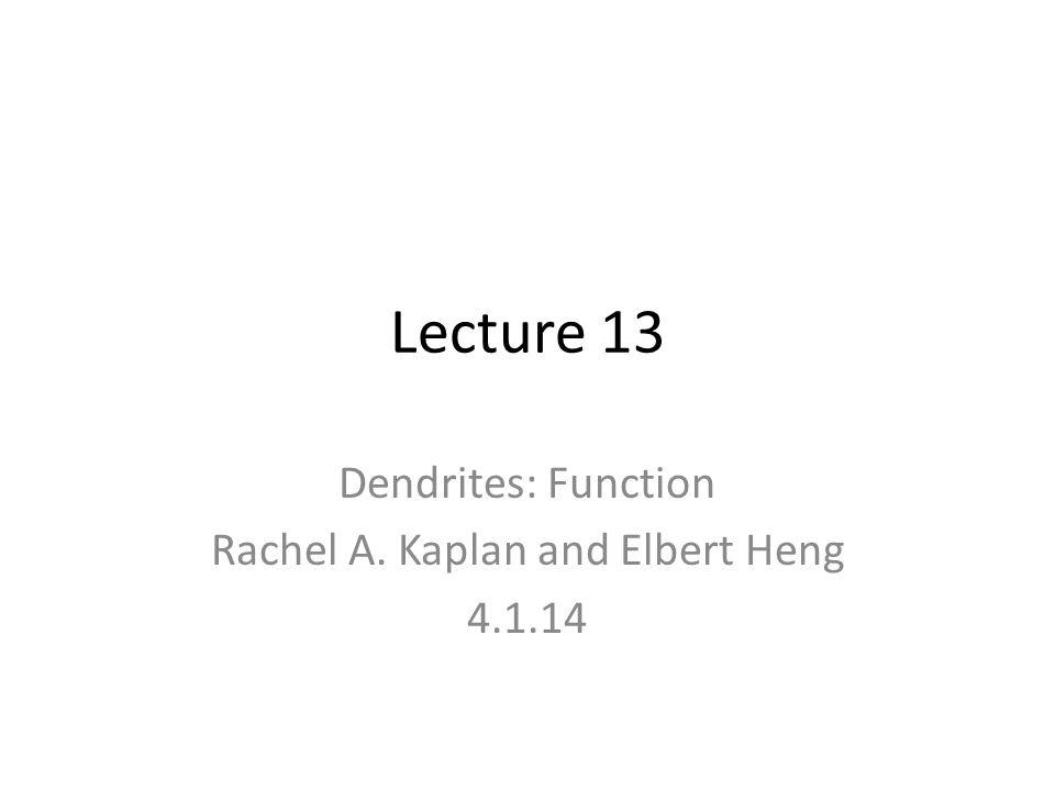 Lecture 13 Dendrites: Function Rachel A. Kaplan and Elbert Heng 4.1.14