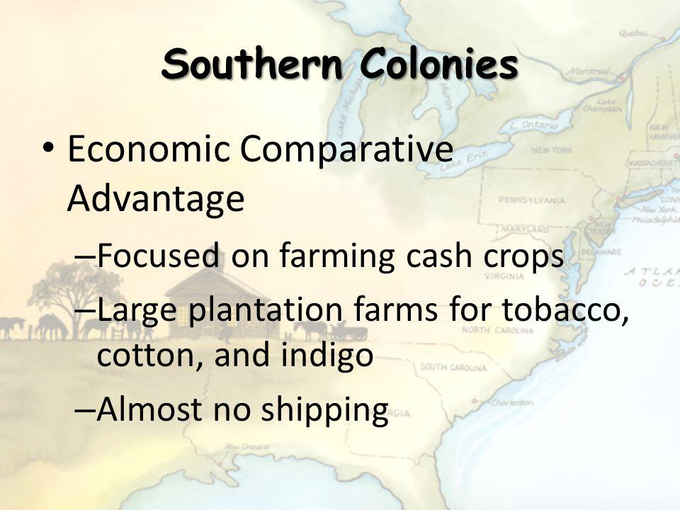Southern Colonies Economic Comparative Advantage – Focused on farming cash crops – Large plantation farms for tobacco, cotton, and indigo – Almost no