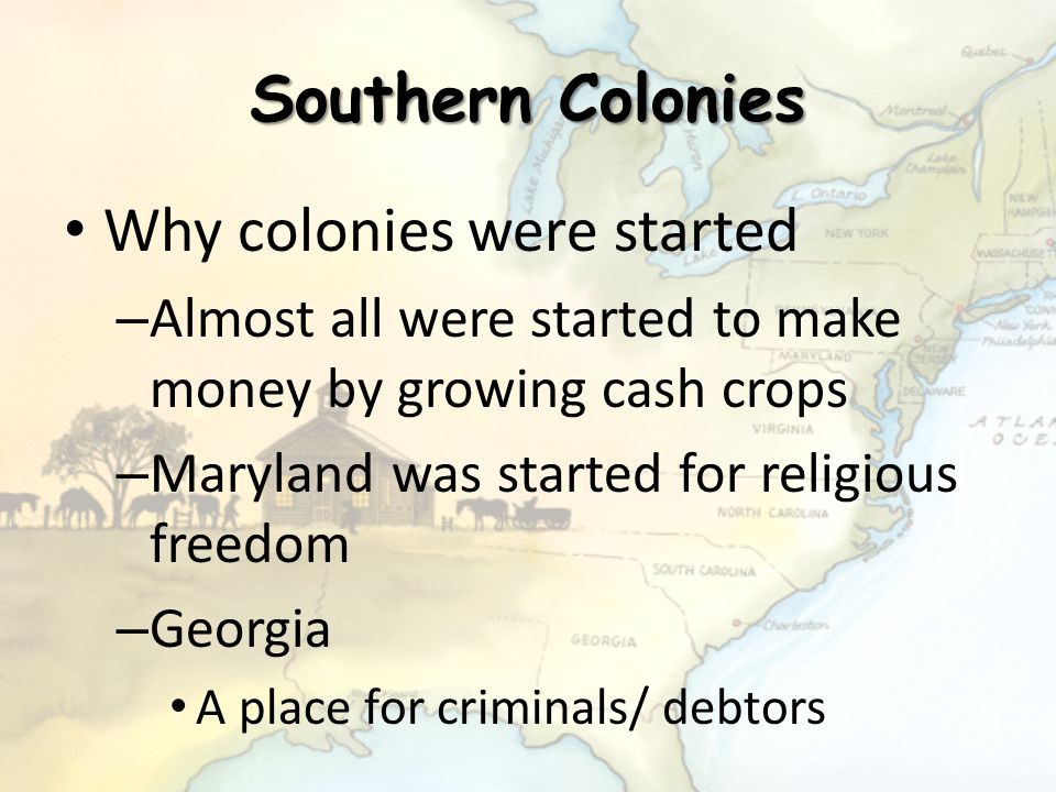 Southern Colonies Why colonies were started – Almost all were started to make money by growing cash crops – Maryland was started for religious freedom