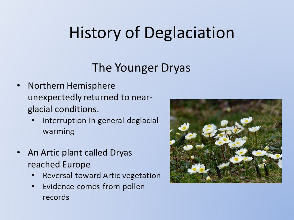 The Younger Dryas Northern Hemisphere unexpectedly returned to near- glacial conditions.
