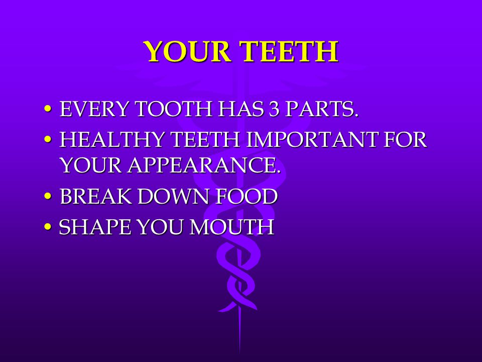 YOUR TEETH EVERY TOOTH HAS 3 PARTS.EVERY TOOTH HAS 3 PARTS. HEALTHY TEETH IMPORTANT FOR YOUR APPEARANCE.HEALTHY TEETH IMPORTANT FOR YOUR APPEARANCE. B