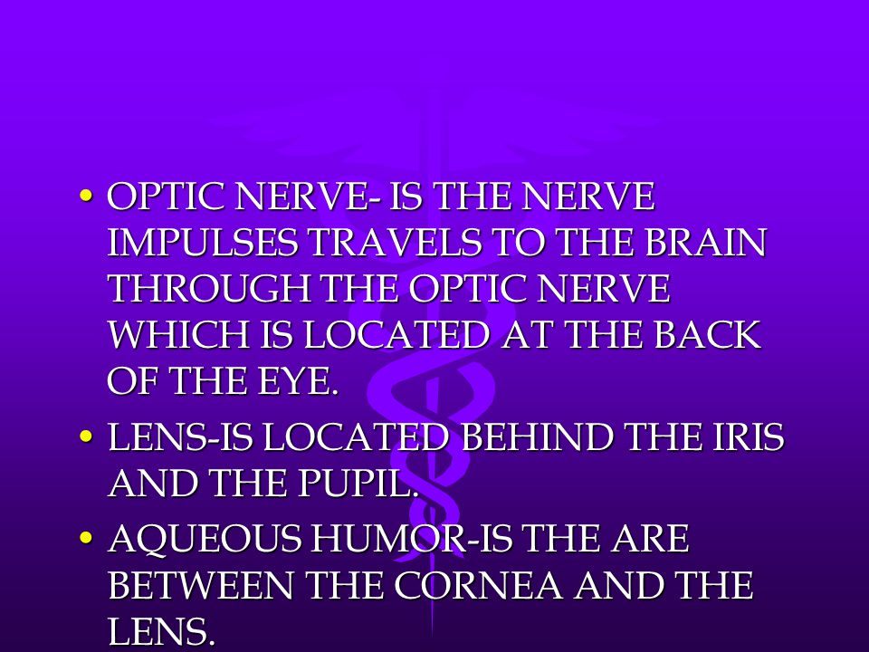OPTIC NERVE- IS THE NERVE IMPULSES TRAVELS TO THE BRAIN THROUGH THE OPTIC NERVE WHICH IS LOCATED AT THE BACK OF THE EYE.OPTIC NERVE- IS THE NERVE IMPU