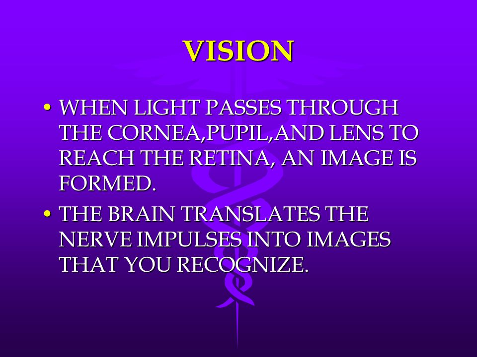 VISION WHEN LIGHT PASSES THROUGH THE CORNEA,PUPIL,AND LENS TO REACH THE RETINA, AN IMAGE IS FORMED.WHEN LIGHT PASSES THROUGH THE CORNEA,PUPIL,AND LENS