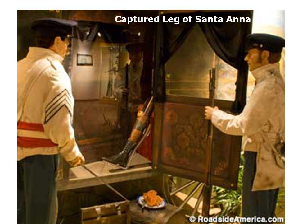 Captured Leg of Santa Anna