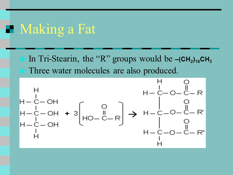 """Making a Fat In Tri-Stearin, the """"R"""" groups would be –(CH 2 ) 16 CH 3 Three water molecules are also produced."""