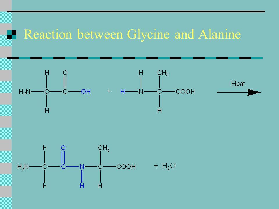Reaction between Glycine and Alanine