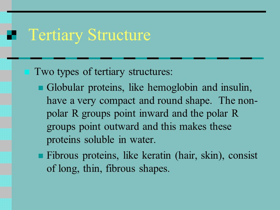 Tertiary Structure Two types of tertiary structures: Globular proteins, like hemoglobin and insulin, have a very compact and round shape. The non- pol