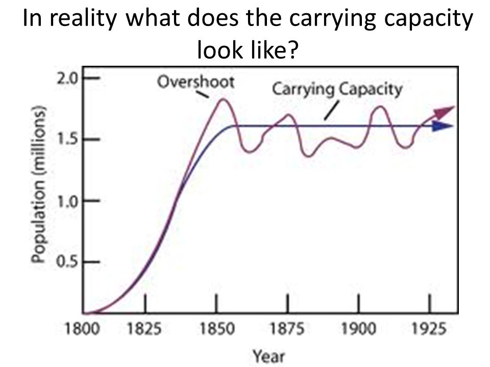 In reality what does the carrying capacity look like