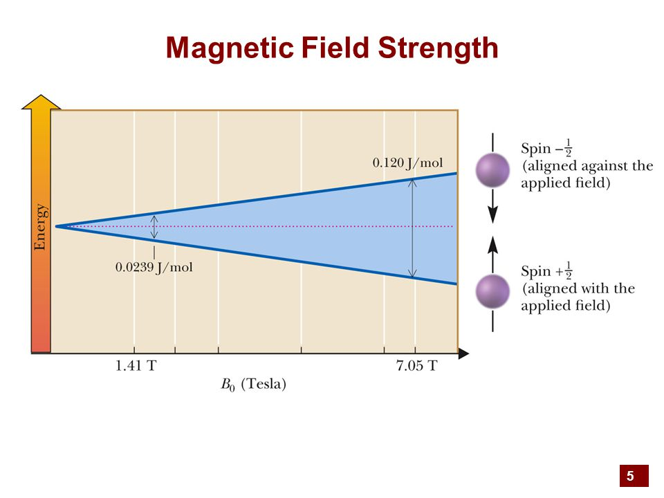 5 Magnetic Field Strength