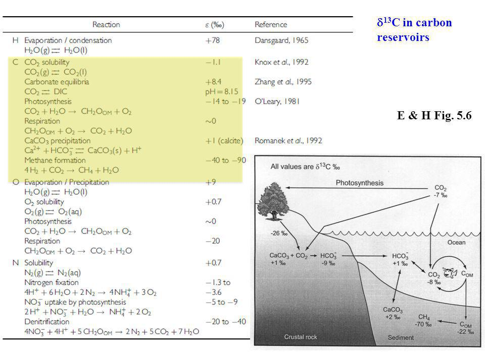 E & H Fig. 5.6  13 C in carbon reservoirs