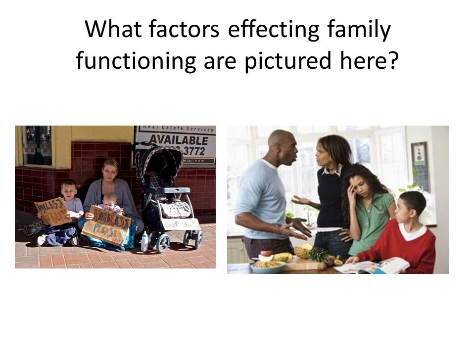 What factors effecting family functioning are pictured here?