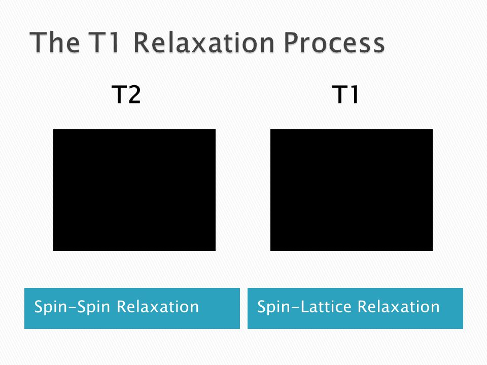 Spin-Spin RelaxationSpin-Lattice Relaxation T1T2