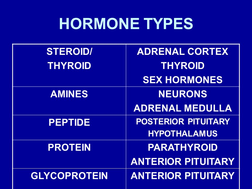 HORMONE TYPES STEROID/ THYROID ADRENAL CORTEX THYROID SEX HORMONES AMINESNEURONS ADRENAL MEDULLA PEPTIDE POSTERIOR PITUITARY HYPOTHALAMUS PROTEINPARATHYROID ANTERIOR PITUITARY GLYCOPROTEINANTERIOR PITUITARY