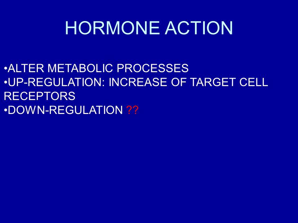 HORMONE ACTION ALTER METABOLIC PROCESSES UP-REGULATION: INCREASE OF TARGET CELL RECEPTORS DOWN-REGULATION ??
