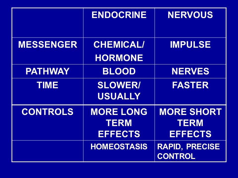 ENDOCRINENERVOUS MESSENGERCHEMICAL/ HORMONE IMPULSE PATHWAYBLOODNERVES TIMESLOWER/ USUALLY FASTER CONTROLSMORE LONG TERM EFFECTS MORE SHORT TERM EFFECTS HOMEOSTASISRAPID, PRECISE CONTROL