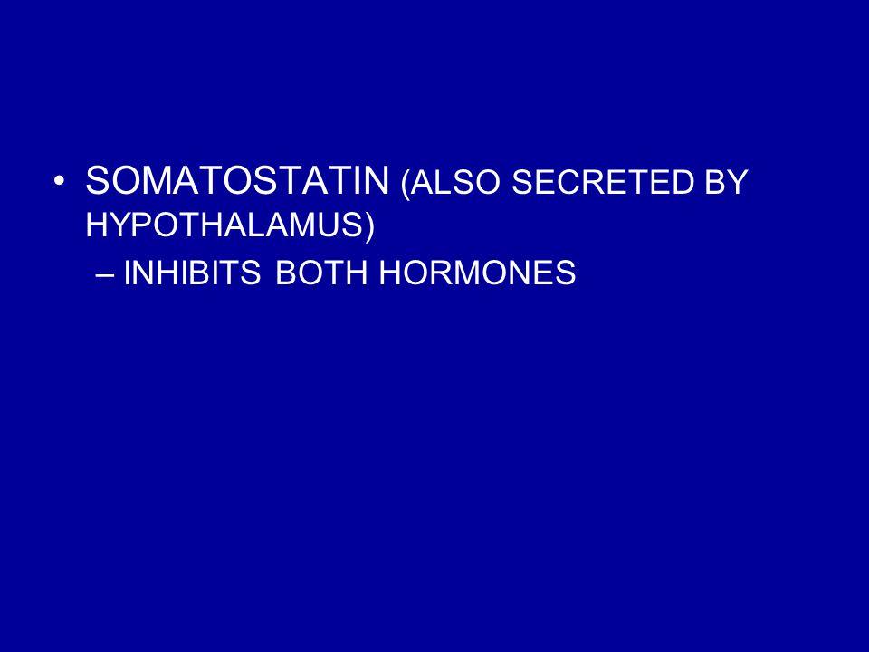SOMATOSTATIN (ALSO SECRETED BY HYPOTHALAMUS) –INHIBITS BOTH HORMONES